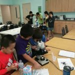 Greenville Chinese School STEM Classes